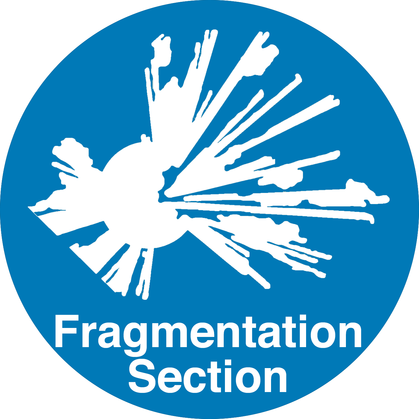 Fragmentation Section